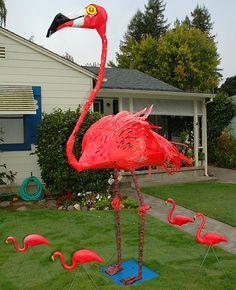 Sculpture by Patrick Amiot and Brigitte Laurent: Flamingo. Sculpture Art, Sculptures, Recycle Art, Junk Art, Sonoma County, Large Art, Metal Art, Robots, Flamingo