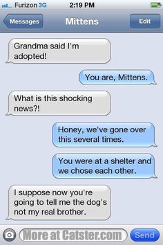 Text Texts From Mittens: The Tough Guy Edition Catster Click image to read more! Dog Texts, Funny Texts, Funny Jokes, Drunk Texts, Epic Texts, 9gag Funny, Funny Minion, Cat Facts Text, Cat Text