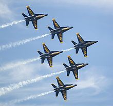 The Blue Angels in their F/A-18 Hornets.  Go Navy!