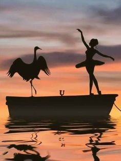 Passionately Curious // Beautiful Silhouette Photography by Dominic Liam ( Dancer Photography, Amazing Photography, Nature Photography, Ballerina Art, Silhouette Photography, Silhouette Painting, Shadow Art, Dance Pictures, Dance Art