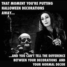 Holidays Halloween, Halloween Fun, Halloween Decorations, Halloween Countdown, Halloween Images, Last Minute Halloween Costumes, Halloween Horror, Male Witch, My Photos