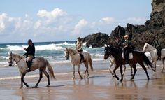 Equestrian Tour in Costa Vicentina, Alentejo, Portugal (6 days)    On the coast bathed by the Atlantic ocean, exposed or hidden among the rocks, there are dozens of beaches to discover. With a coastline well preserved, the seaside has crowded and wild beaches for all tastes. Along the beaches you will also find small fishing villages huddled over the sea where you can enjoy the local gastronomy based on fresh fish and meat of calf obtained from cattle groups that blend well with the…