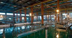 smutsigt vatten Water Filtration System, Water Purification, Water Filter