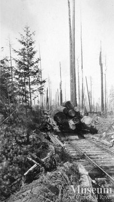 "Abbott Timber Co.logging operations (1909) ""A load of logs on a railcar at Haskin's Place, Quadra Island.""  Yeatman Fonds - CR Museum"