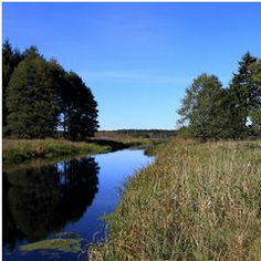 Landschaft am Omulewfluss