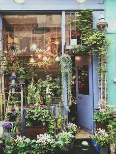 Garden shop, flowers и store fronts. Garden Cafe, Garden Shop, Shop Fronts, Flower Market, Flower Shops, Beautiful Places, Beautiful Flowers, Fresh Flowers, Cut Flowers