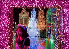 Singapore  People tour a Christmas attraction featuring a display of more than 800,000 lightbulbs at a Universal Studios theme park