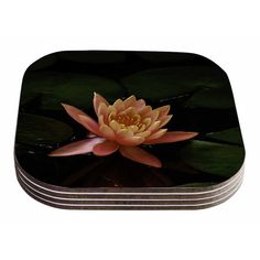 East Urban Home Lily Pad Flower by Nick Nareshni Coaster