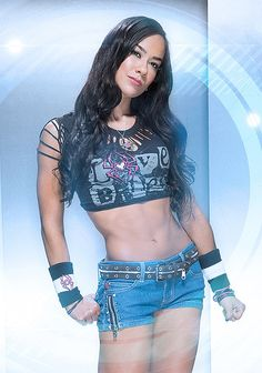 AJ Lee is Still The Queen of the WWE