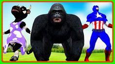 Captain America & Animal Cartoons Children Nursery Rhymes | King Kong Li...