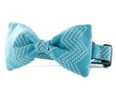 Bow Tie Collar in bright aqua color with tiny white dots in a chevron pattern #dog #bowtie #collar #chevron