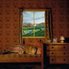 Storm Thorgerson's artwork for Umphrey McGee's album