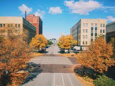 We Are Love, Fall Weather, Nebraska, Seo, Digital Marketing, Sidewalk, Country Roads, Social Media, Videos