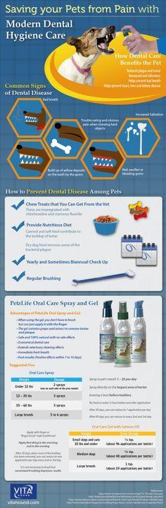 Dental hygiene for dogs #dog #health #dental ~ http://vitahound.com/dog-health-library/product-info/oral-care/petzlife-oral-care-spray-2/