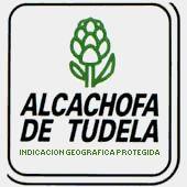 ALCACHOFA DE TUDELA EN ESPAÑA (Navarra).
