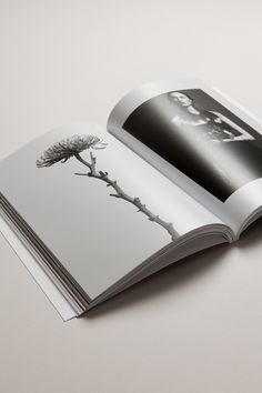 MotherVolume ll — TranscendenceDesign and typographic creationJune 2013