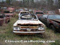 classic cars rotting  | Junk Car Removal, get an offer in minutes. Wallpaper image (1024x768 ...