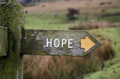 """""""La esperanza es esa cosa con plumas, que se posa en el alma y canta sin parar."""" —Emily Dickinson"""