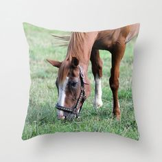Brown Horse in Field, Pillow Cover by BacktoBasicsPillows on Etsy