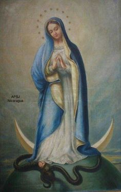 Sois Madre de Dios y mía, sois el fin de mi esperanza sois mi placer y alegría sois mi bienaventuranza. Mother Of Christ, Blessed Mother Mary, Blessed Virgin Mary, Catholic Art, Catholic Saints, Religious Art, Queen Of Heaven, Mama Mary, Immaculate Conception