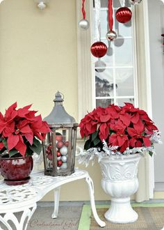 Use real poinsettas on front porch and bring inside overnight if too cold....otherwise use artificial ones.