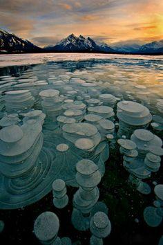 Ice columns, Abraham Lake, Alberta, Canada