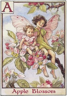 Apple Blossom Fairies by Cicely Mary Barker. I love ALL of her fairies, but this is my favorite because it reminds me of my daughters. :)
