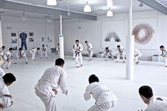Video: Mendes Bros ART OF JIU JITSU