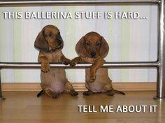Ballerina Babies.