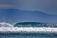 """G-Land Joyo's Surf Camp is a Surf Resort situated on the South-Eastern Peninsula of Java in the National Park Reserve of """"Alas Purwo"""" their Camp is nestled in a jungle teeming with wildlife and only 100 meters from the legendary waves of G-land!"""