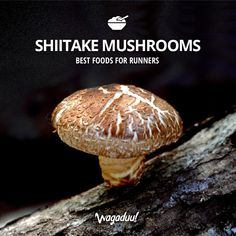 Shiitake mushrooms can assist in preventing cardiovascular diseases, improve functioning of the immune system and reduce cholesterol! #nutrition