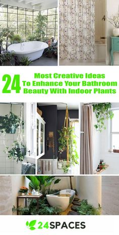 Brilliant 24 Most Creative Ideas To Hack Your Bathroom Beauty With Indoor Plant Ideas https://24spaces.com/interior-design/24-most-creative-ideas-to-hack-your-bathroom-beauty-with-indoor-plant-ideas/