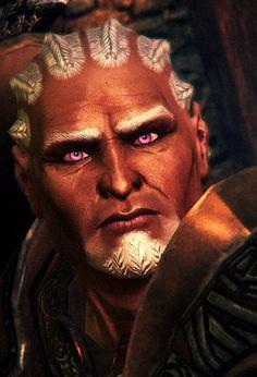 Sten, Dragon Age: Origins