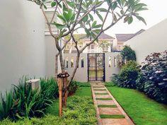 Tukang Taman | Jasa Pembuatan Taman: Tukang Taman Cilandak, Pasar Minggu, Kebayoran Lam...