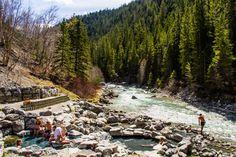"Lussier Hot Springs in Whiteswan Lake Provincial Park are located near Cranbrook in the Kootenay Rockies region.  ""Lussier hot springs"" #explorebc"