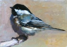 Blackcapped Chickadee Original oil painting by FinchArts on Etsy Mini Paintings, Animal Paintings, Watercolor Bird, Watercolor Paintings, Wildlife Art, Bird Art, Beautiful Birds, Pet Portraits, Painting Inspiration