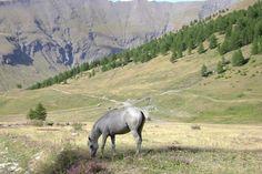 Valle Argentera. Piemonte. Italia. ScritturaSpontanea