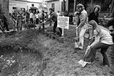 """""""This bomb crater was dug by Rainbow People of Ann Arbor on July 4, 1972. It symbolizes the death and destruction caused by U.S. bombs to the people of Indochina.""""  Peter Andrews, Kathy Kelley, Lawrence (Pun) Plamondon, David S. Fenton, David Sinclair and other members of the Rainbow People's Party and the commune at 1510 Hill St fill in the bomb crater they had dug nearly 3 years earlier in the front lawn, May 1975 — in Ann Arbor Michigan.  Photo credit: Herald Company, Inc. David Sinclair, Ann Arbor, Vietnam War, Destruction, 3 Years, Photo Credit, Lawn, Michigan, Fill"""