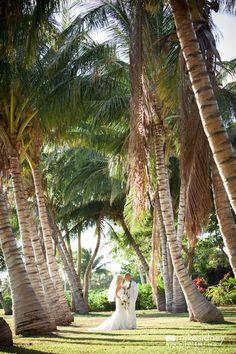 Olowalu Plantation House Maui Wedding Planner
