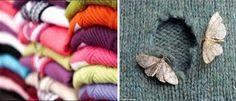 Χειμωνιάτικα ρούχα: Απαλλάξου από το σκόρο!!!  #ΧρήσιμαTips
