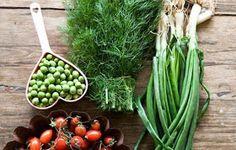 Μικρά Μυστικά: Νηστίσιμο διαιτολόγιο επτά ημερών και συνταγές Celery, Vegetables, Food, Essen, Vegetable Recipes, Meals, Yemek, Veggies, Eten