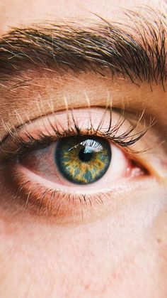 Trendy ideas for eye iris beautiful Beautiful Eyes Color, Stunning Eyes, Pretty Eyes, Yellow Eyes, Green Eyes, Blue Eyes, Yellow Iris Eye, Blue Green, Human Eye