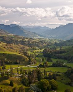 Classic New Zealand Farmland