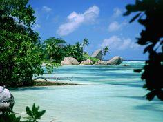 Aldabra, Seychelles | ... , Île aux Cendres or Île aux Aigrettes - Aldabra Atoll, Seychelles