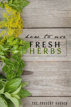 Whether your are a seasoned herb grower or are growing herbs for the first time, let us share some inspiration on how to use fresh herbs from your garden.