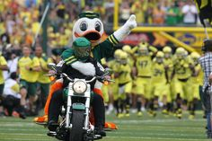 The Duck leads his flock on the field vs. Tennessee, Sept. 14, 2013. (Photo by Eric Evans) #GoDucks