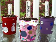 Yogurt container seed pots Preschool Garden, Toddler Preschool, Craft Activities For Kids, Crafts For Kids, Craft Ideas, Rainbow Badge, Cup Crafts, Yogurt Cups, Great Gifts For Mom