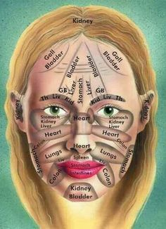 Lymphatic areas of your face.  Message these areas to drain ur lymphatic areas.