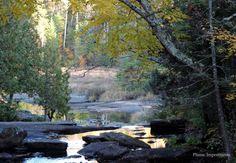 Marcher dans la forêt, faire une pause, écouter la nature en faisant le silence en soi, cela nous permet de mieux nous connecter à notre moi profond. En calmant notre esprit vagabond, nous retirons tous les bénéfices de ce silence. Nous sommes en communication...