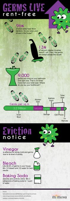 An infographic about germs in your home. Germs live rent-free!
